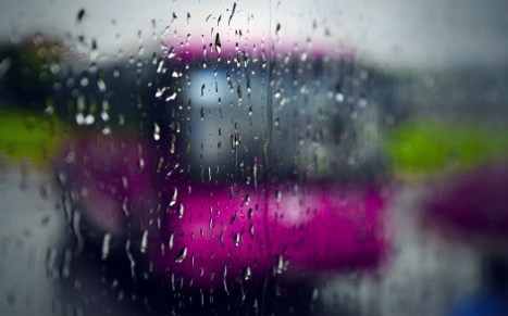 rainy_day-t2.jpg